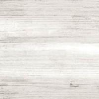 Nautilus Blanco 24X88